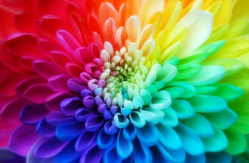 Considering the Psychology of Color